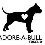 Adore a Bull Rescue